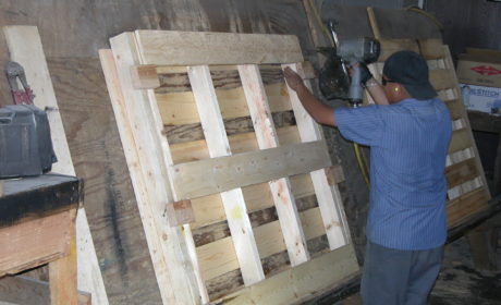 Products New Pallet - Production 1