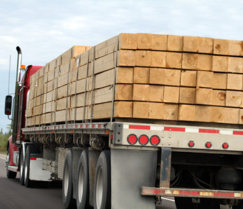Trucks loaded with lumber