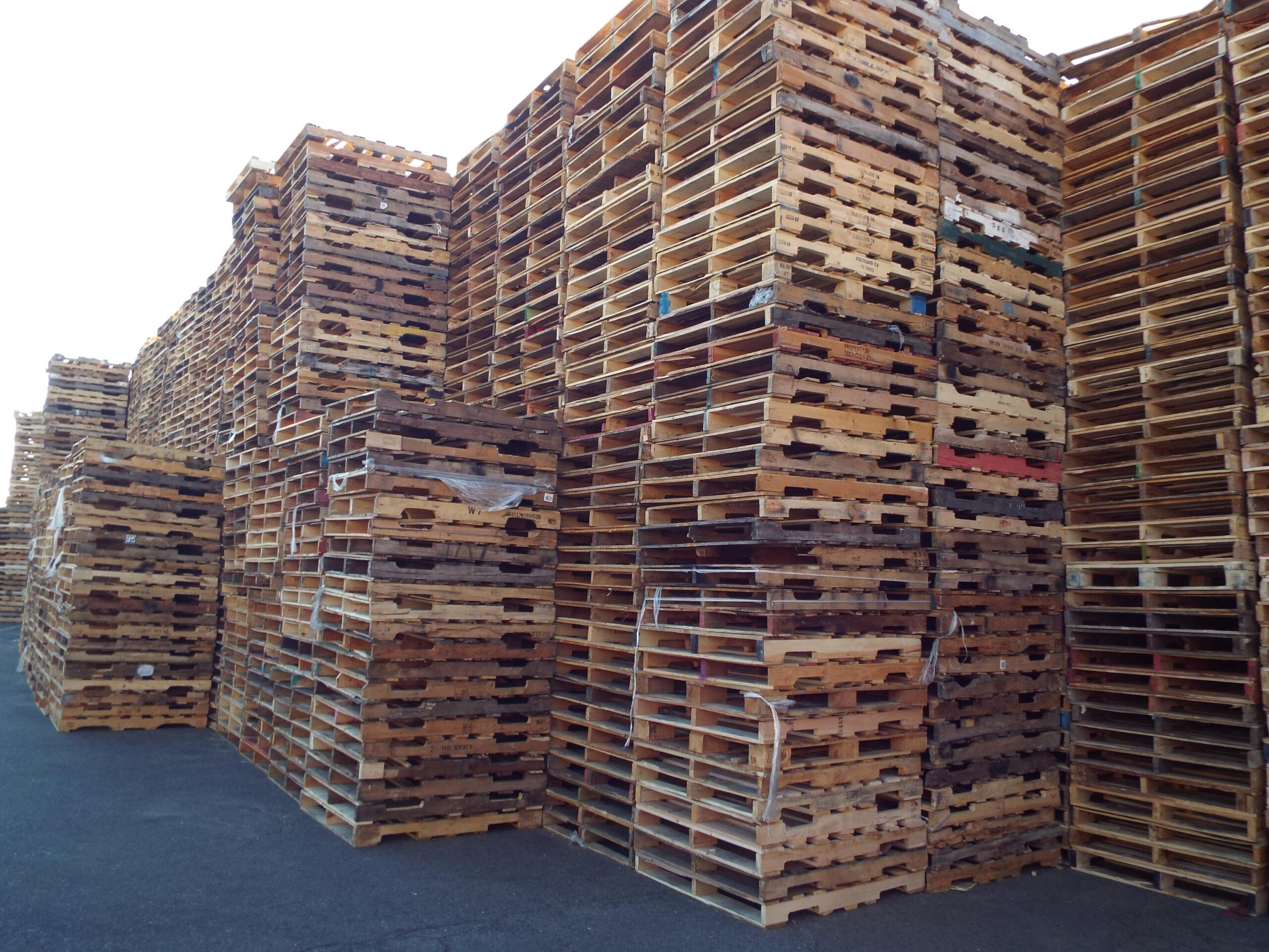 About Us - Sustain - Recycled pallets